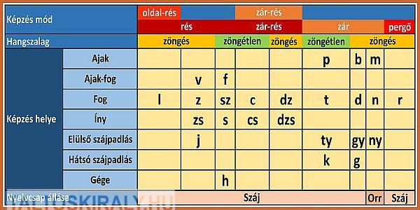 A mássalhangzók rendszere a hangképzésben