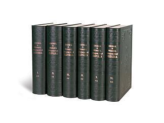 A Czuczor Fogarasi SzótárFölöleli a magyar nyelvnek a XIX. században használt teljes szókészletét – 113 000 szócikket, köztük a korabeli helyneveket.